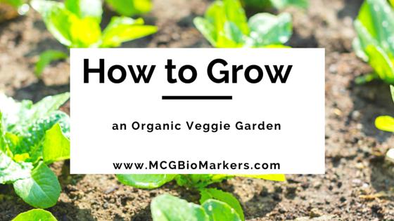 How to Grow an organic veggie garden