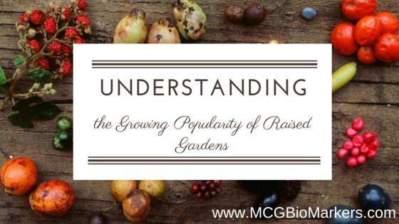 understanding (3)