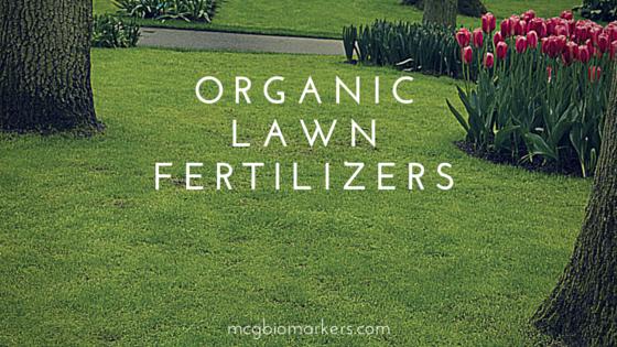 organic lawn fertilizers