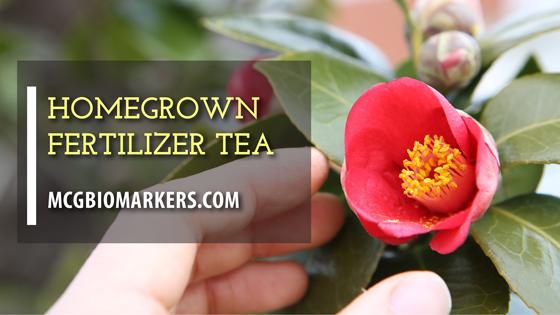 feritlizer-tea
