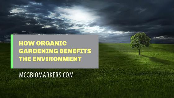 how-organic-gardening-benefits-the-environment.jpg