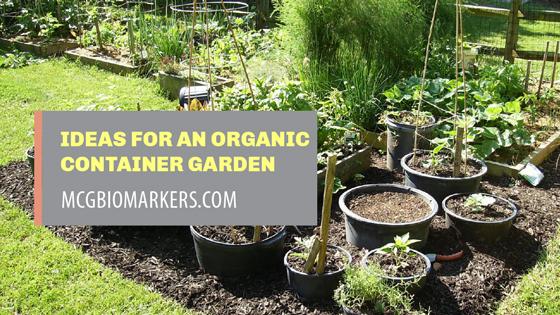 ideas-for-an-organic-container-garden