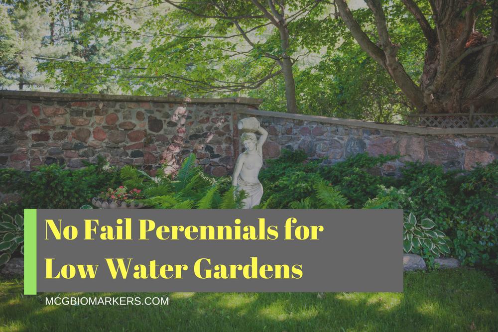 no-fail-perennials-for-low-water-gardens
