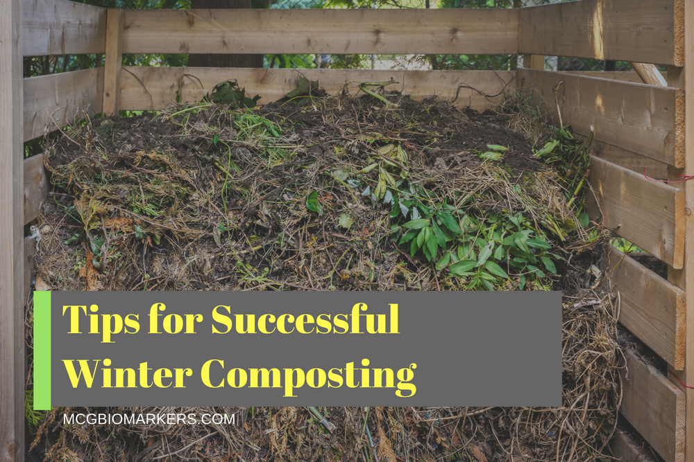 tips-for-successful-winter-composting-1
