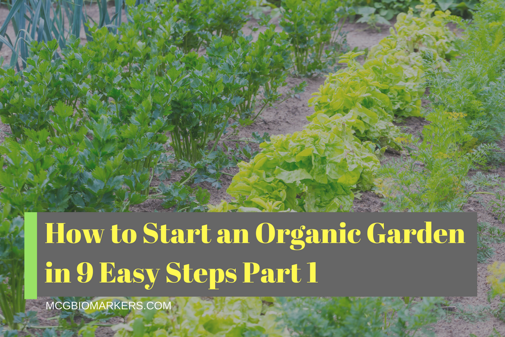 how-to-start-an-organic-garden-in-9-easy-steps-part-1