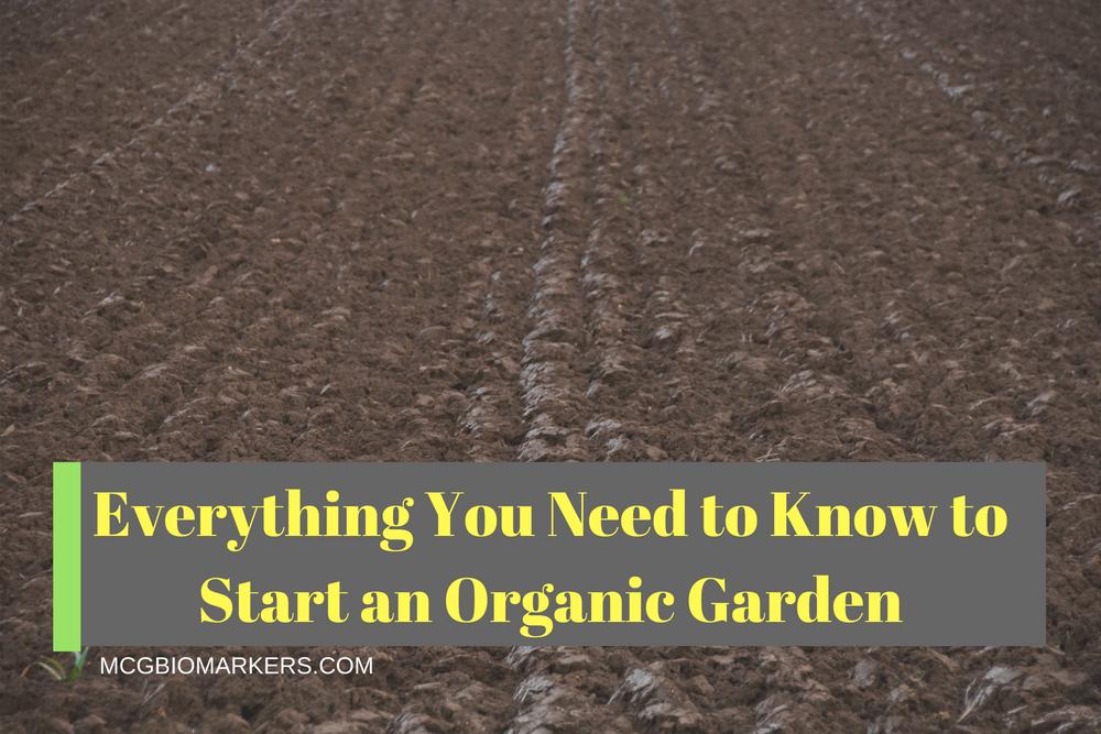 organic-garden-planting-techniques-2