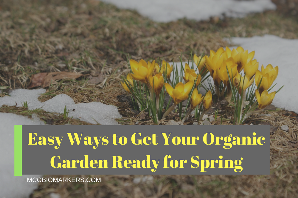 easy-ways-to-get-your-organic-garden-ready-for-spring