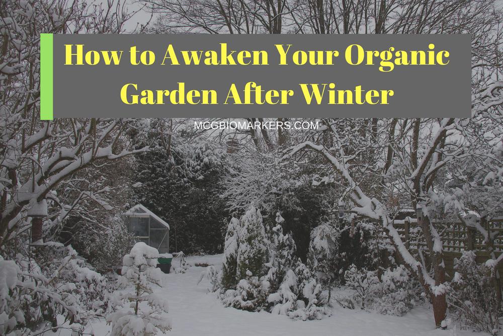 Organic Garden Markers