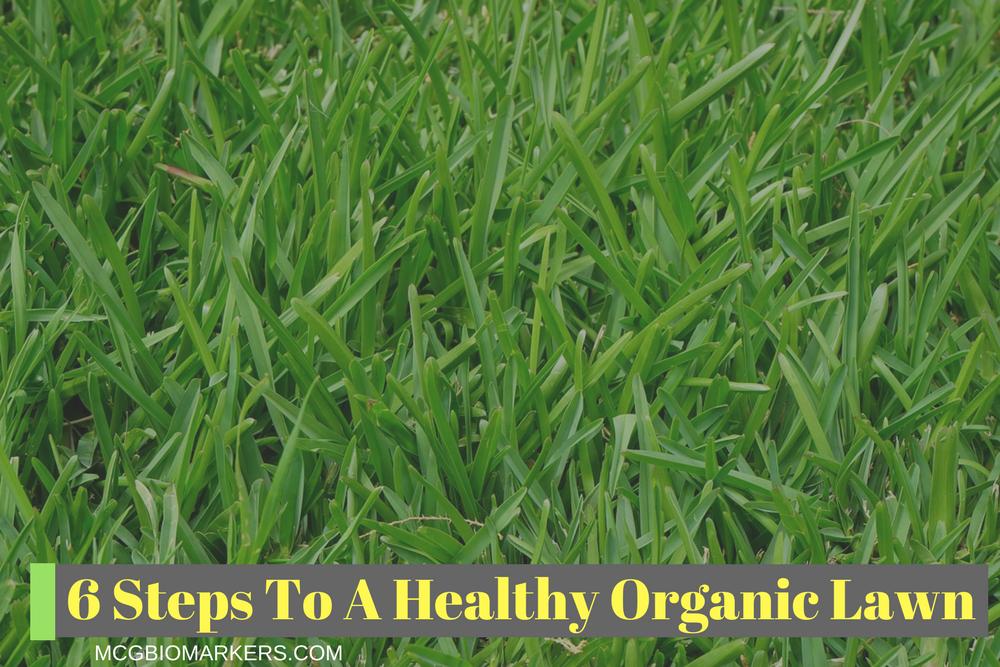 Health and Environmental Benefits of Organic Gardening (5)
