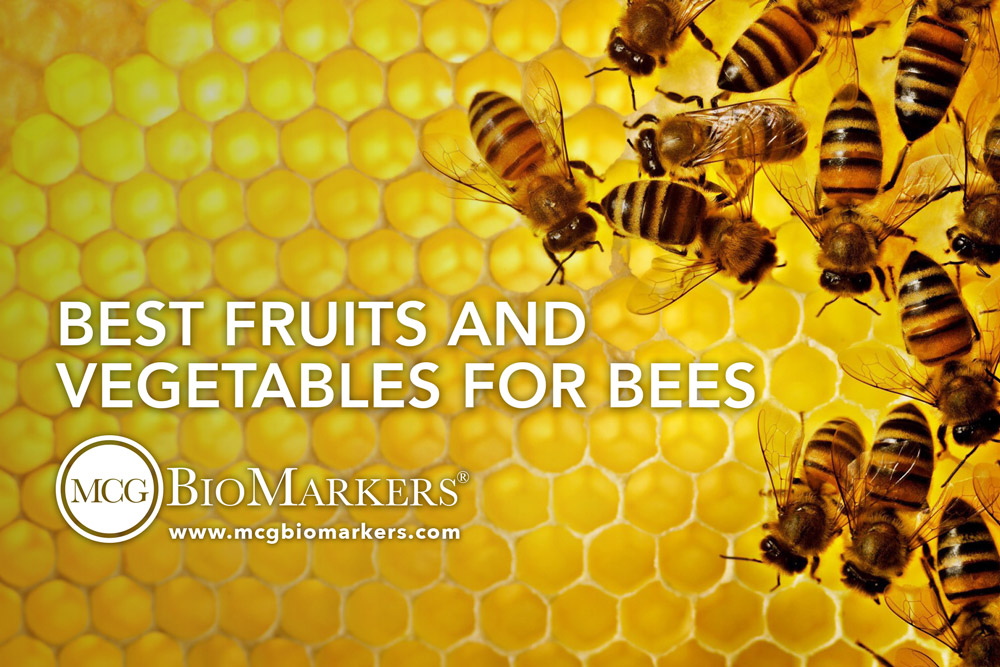 best-fruits-and-vegetables-for-bees-1