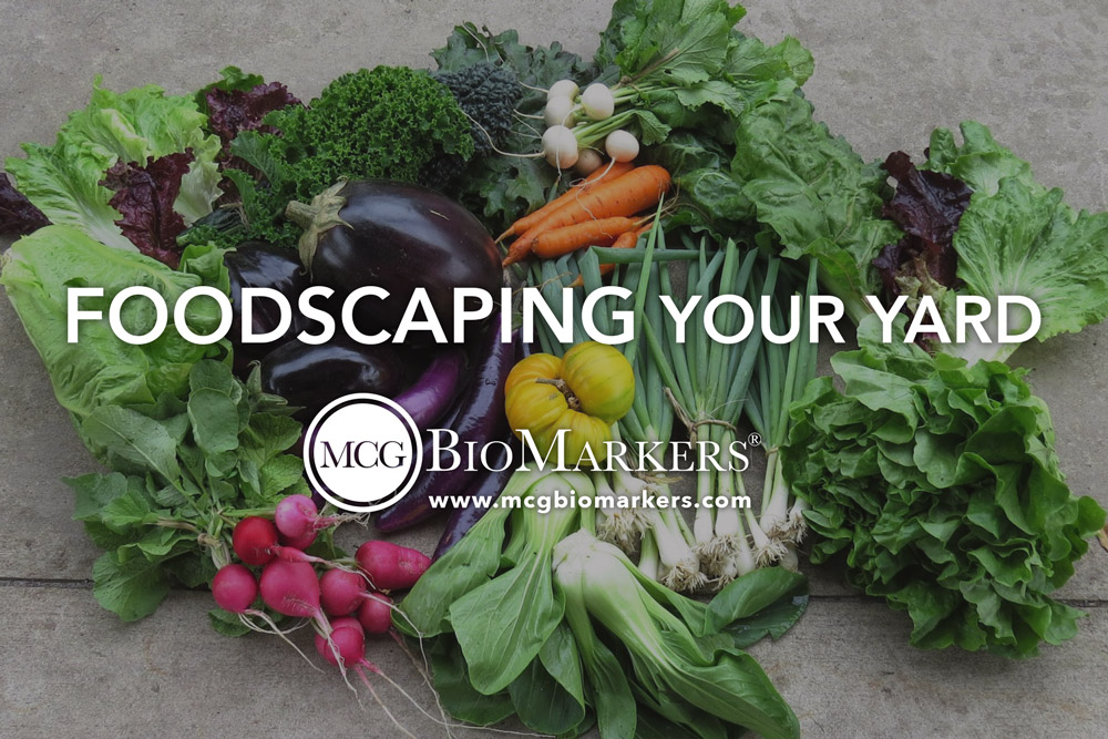 foodscaping-your-yard-1.jpg
