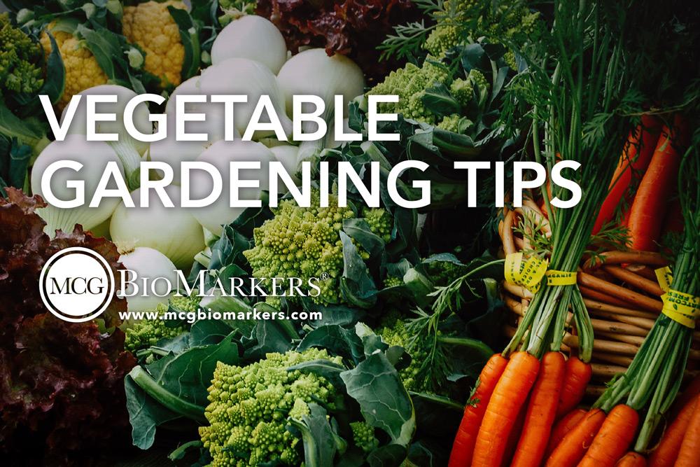 vegetable-gardening-tips-1.jpg