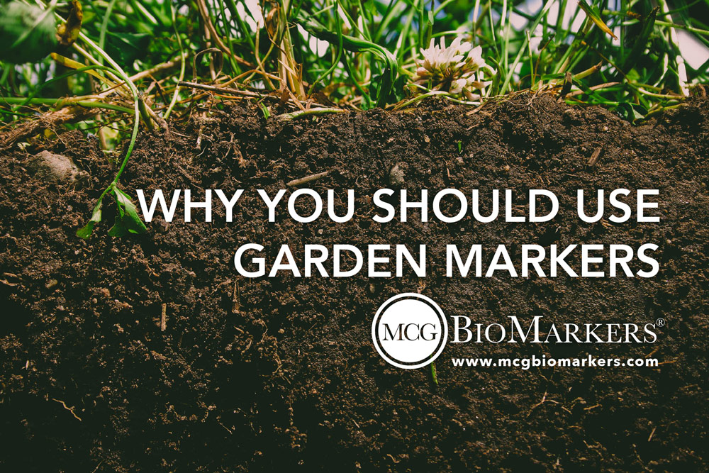 why-you-should-use-garden-markers-1 (1)