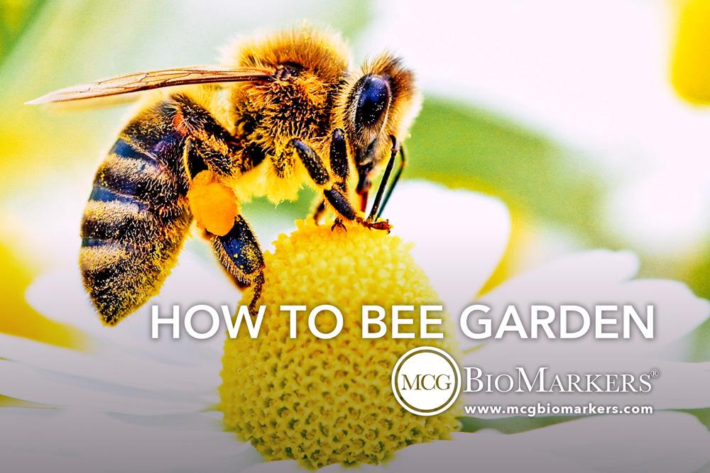 how-to-bee-garden-1