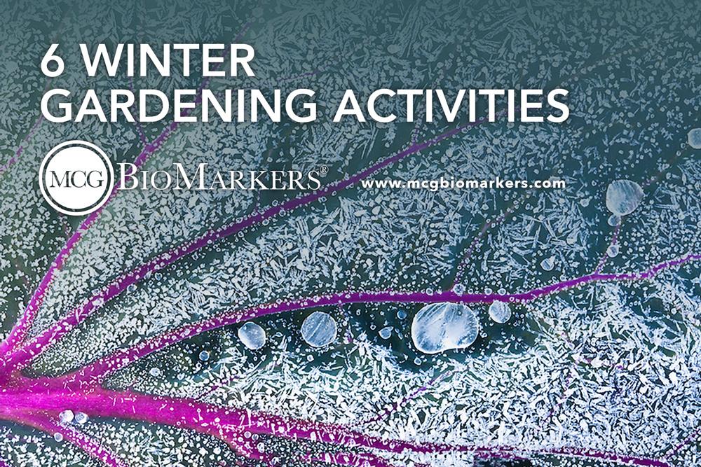 six winter gardening activities blog. Black Bedroom Furniture Sets. Home Design Ideas