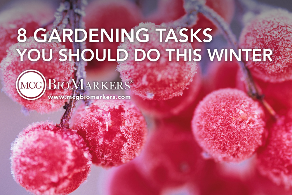 8-gardening-tasks-you-should-do-this-winter-1