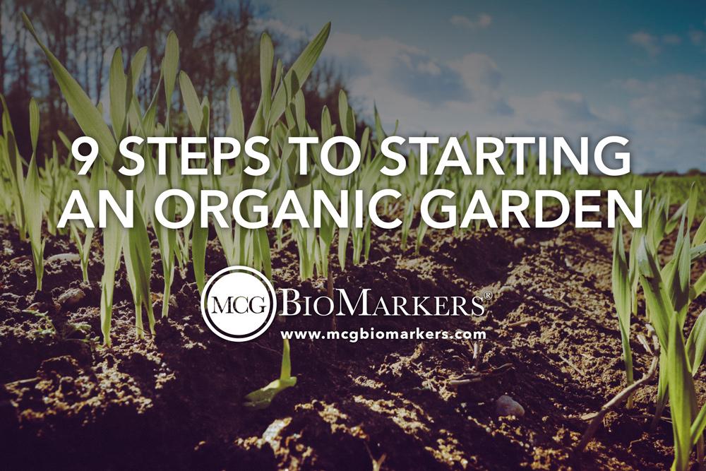 9-steps-to-starting-an-organic-garden-1