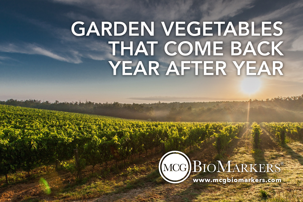 garden-vegetables-that-come-back-year-after-year-1