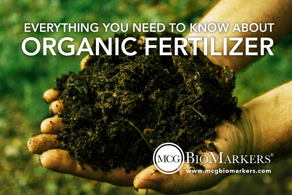 everything-you-need-to-know-about-organic-fertilizer-1.jpg