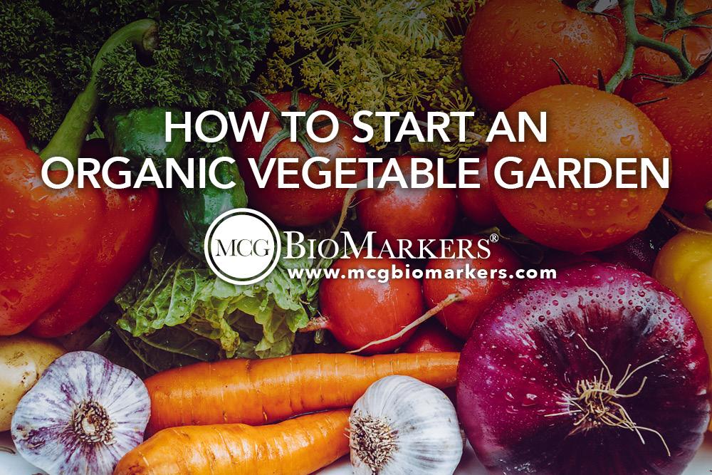 how-to-start-an-organic-vegetable-garden-1.jpg
