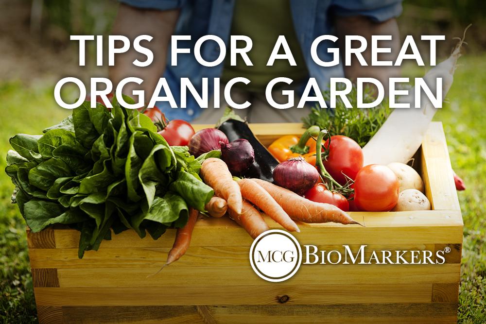 tips for a great organic garden 1