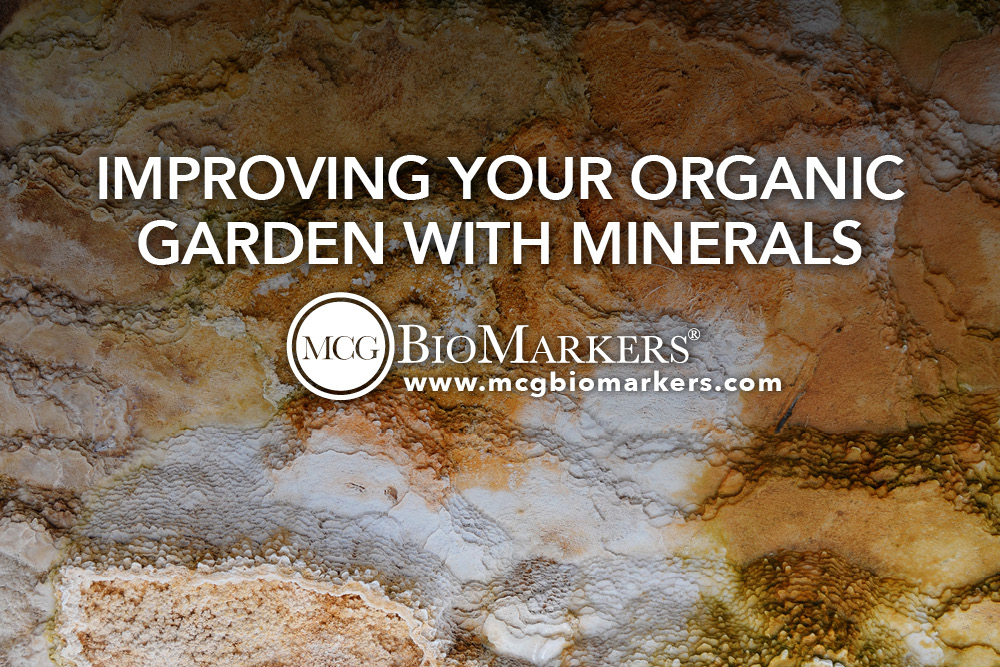 Improving Your Organic Garden with Minerals