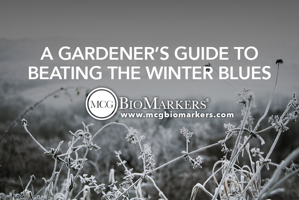 A Gardener_s Guide to Beating the Winter Blues 1