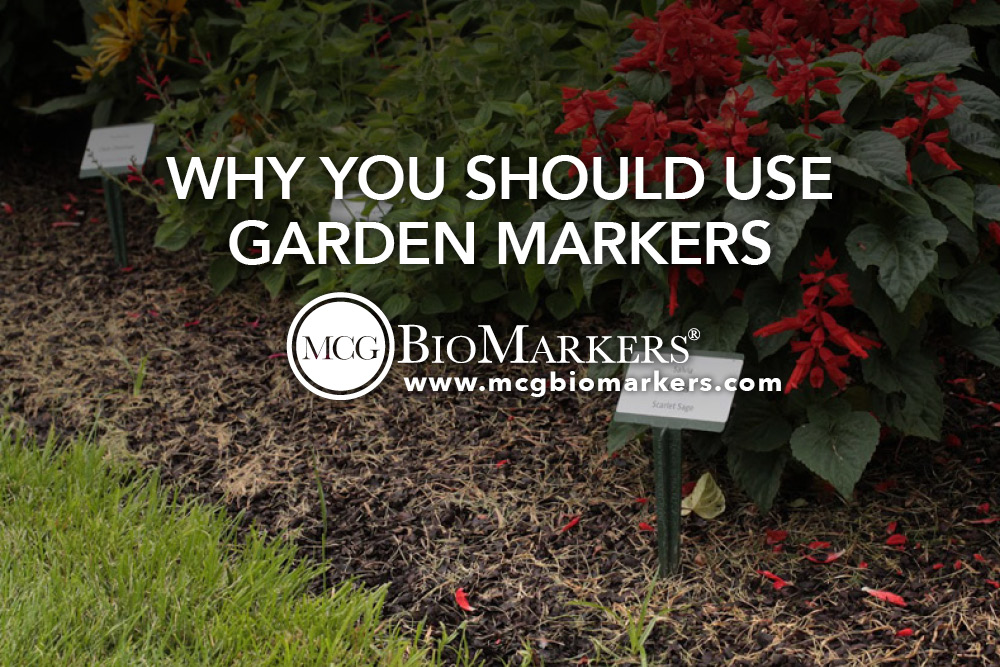 Why You Should Use Garden Markers 1.jpg