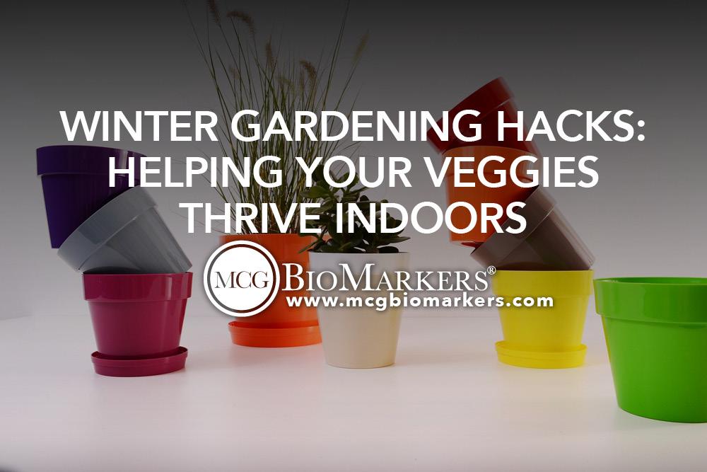 Winter Gardening Hacks- Helping Your Veggies Thrive Indoors 1