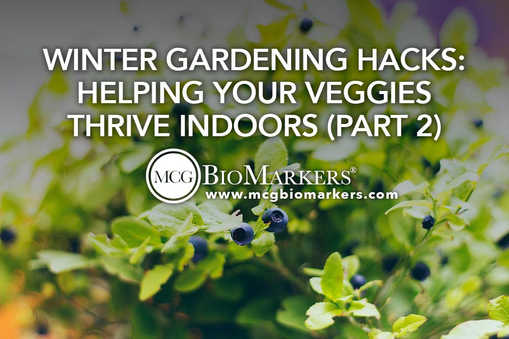 Winter Gardening Hacks- Helping Your Veggies Thrive Indoors (Part 2) .jpg