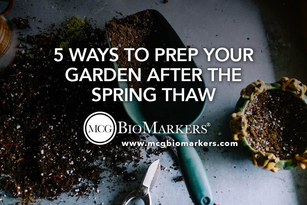 5 Ways to Prep Your Garden After the Spring Thaw 1.jpg