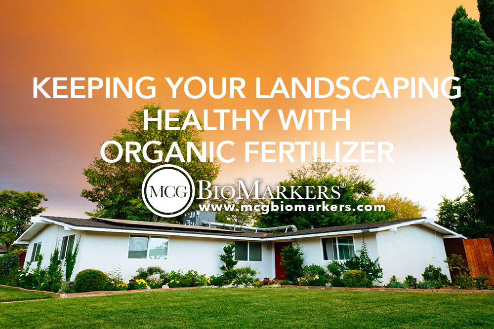 Keeping Your Landscaping Healthy with Organic Fertilizer.jpg