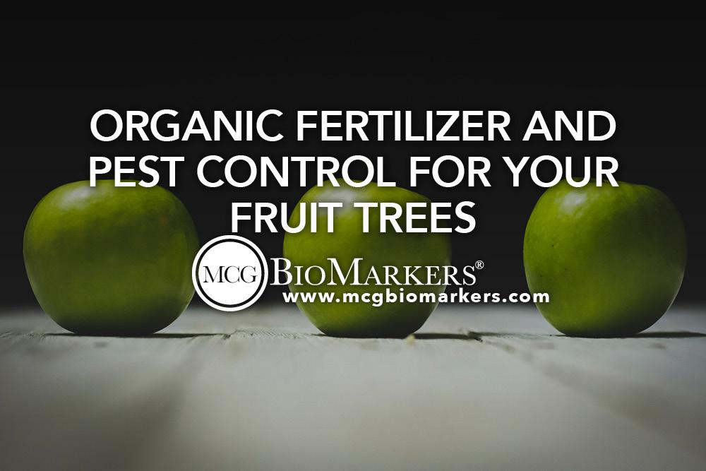 Organic Fertilizer ft 1