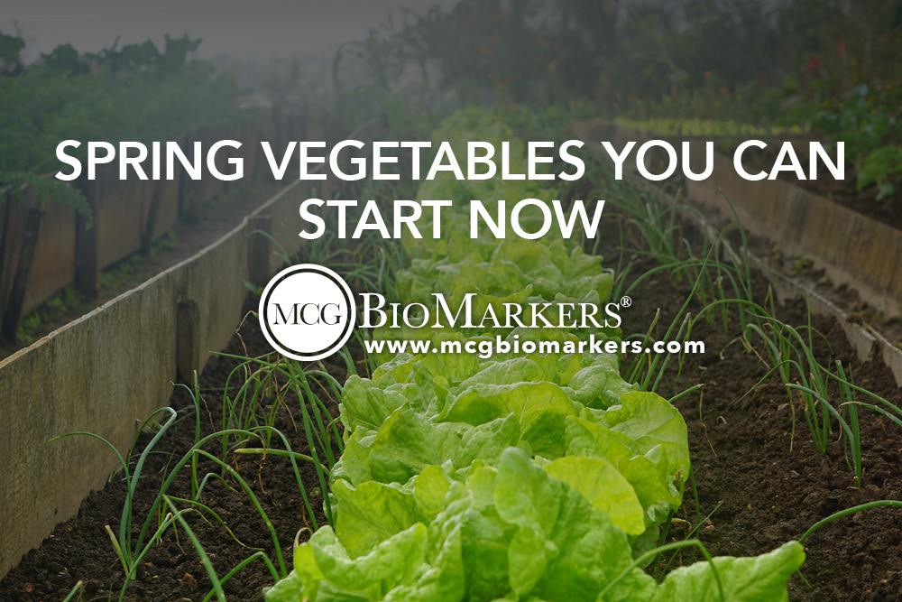 Spring Vegetables You Can Start Now 1.jpg