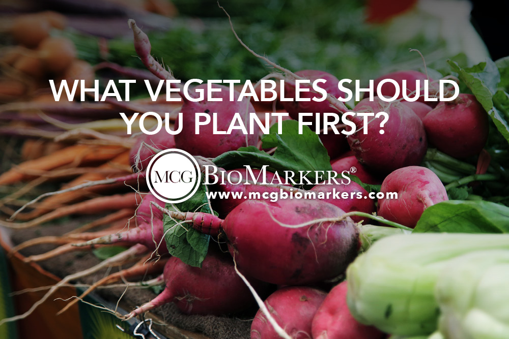 What Vegetables Should You Plant First? 1
