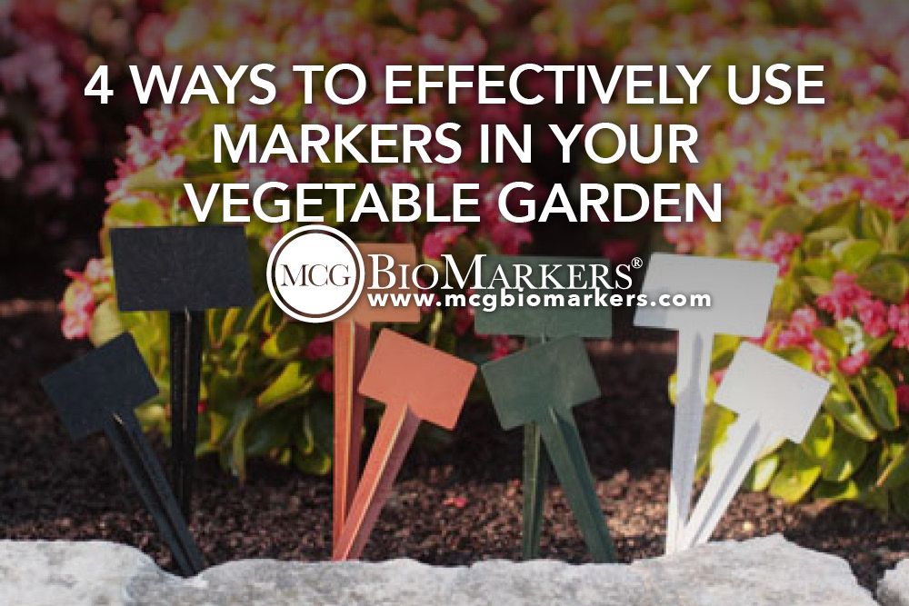 4 Ways to Effectively Use Markers in Your Vegetable Garden.jpg