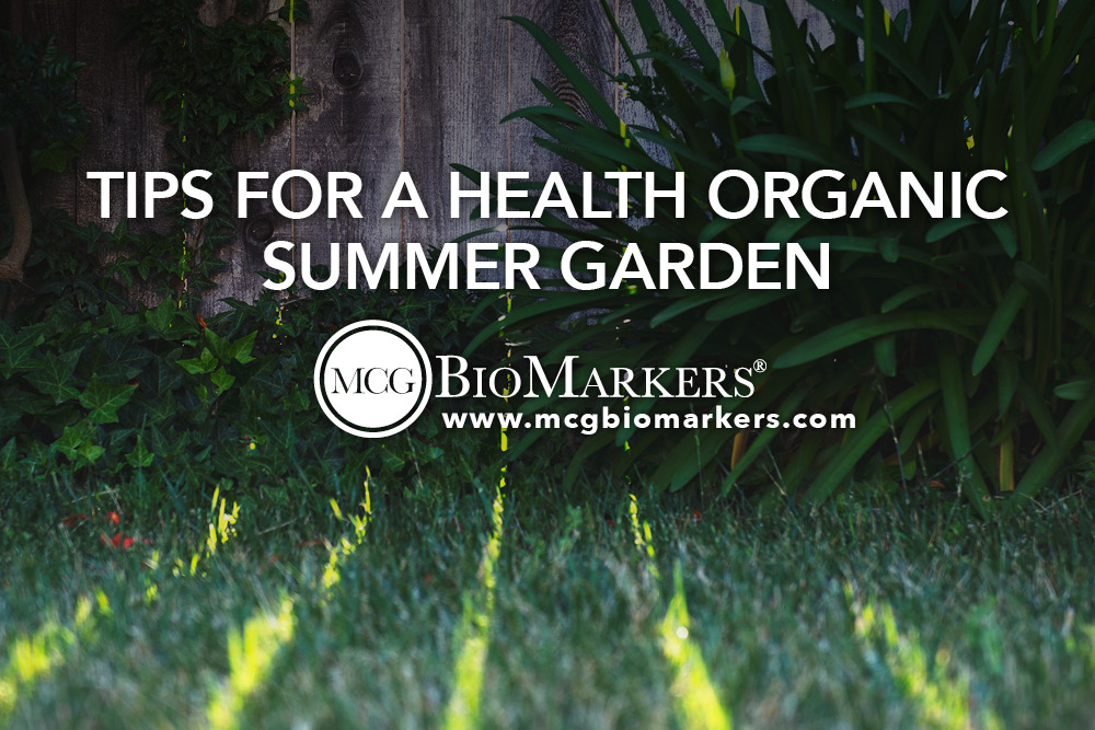 Tips for a Health Organic Summer Garden